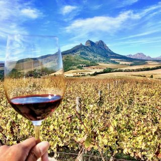 things to do in stellenbosch photo