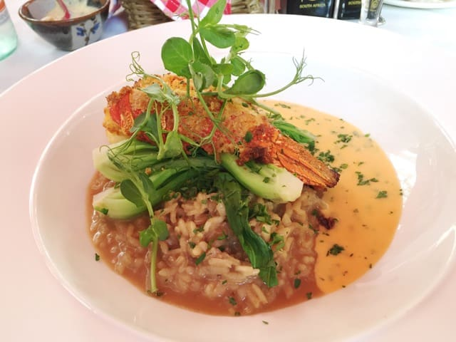 lobster-risotto-coopmanhuijs-photo