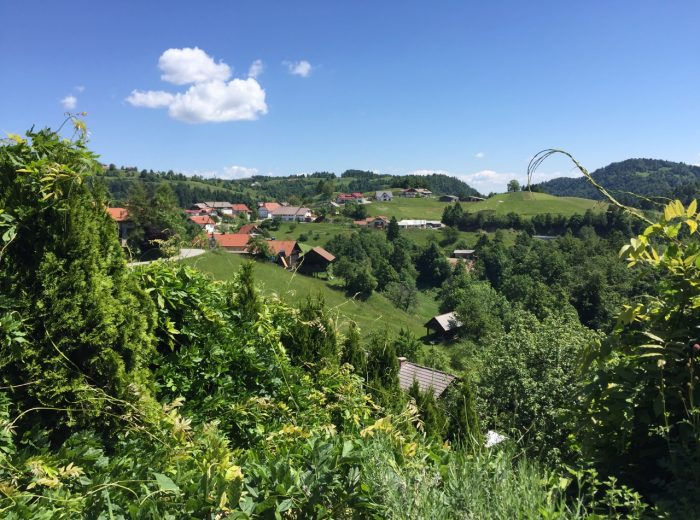 A day trip to the Slovenian countryside