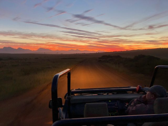 sunrise-gondwana-game-drive-photo