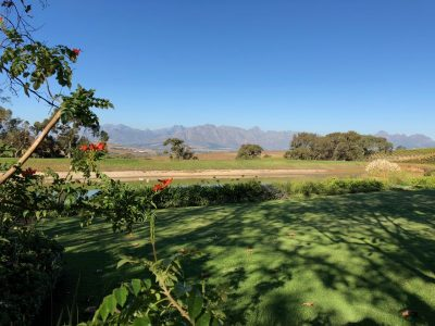 jordan-wine-estate-mountain-view-photo