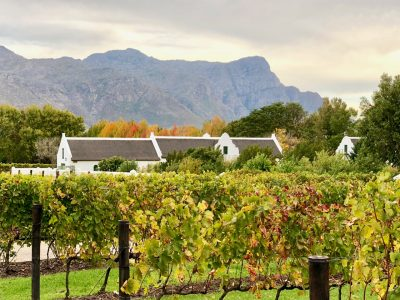 la-motte-franschhoek-south-africa-photo