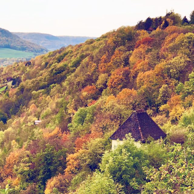 autumn-colours-dornburg-saale-photo