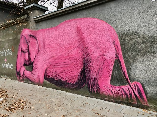 pink-elephant-street-art-kaunas-photo