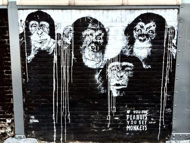 monkeys-amsterdam-street-art-photo