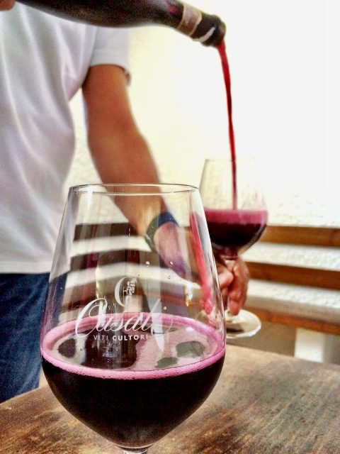 lambrusco-tasting-photo