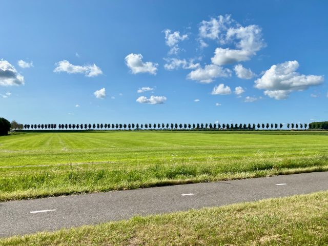 beemster-polder-field-photo