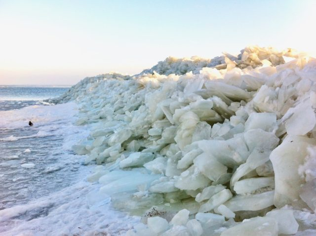 markermeer-ice-shore-photo