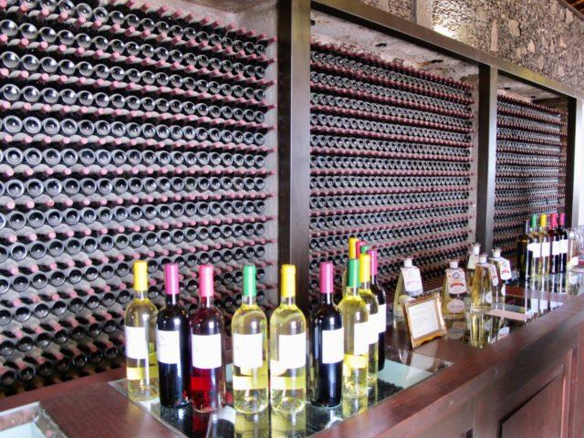 lanzarote wine tasting