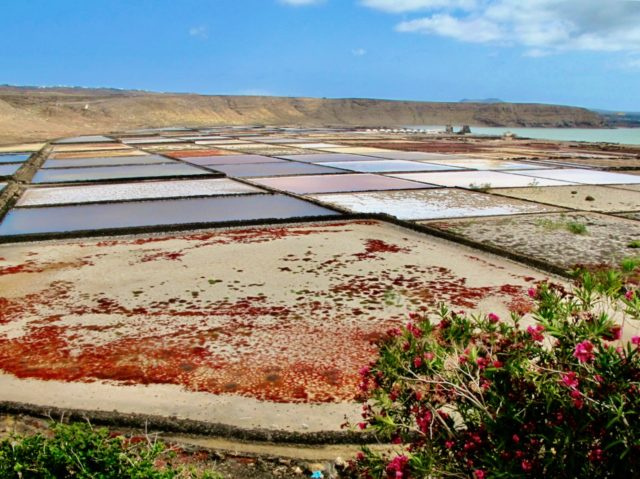 lanzarote day trips
